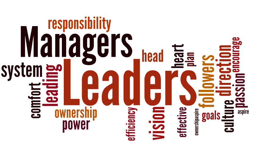 Manager or team leader?